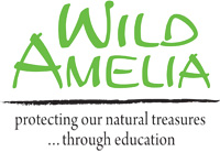 Wild Amelia logo.jpg
